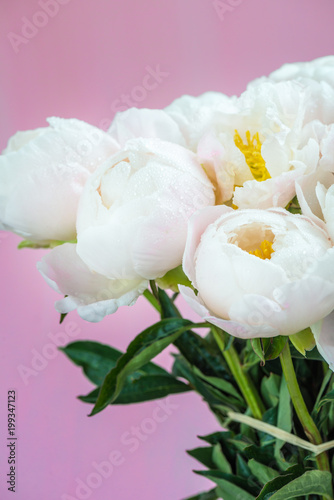 Wall Murals Lily of the valley Beautiful bouquet of white Chinese peonies with Water Drops