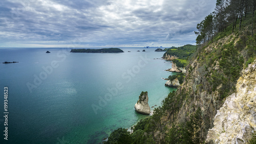 Foto op Canvas Cathedral Cove panorama of coastline of the cathedral cove,coromandel,new zealand 4