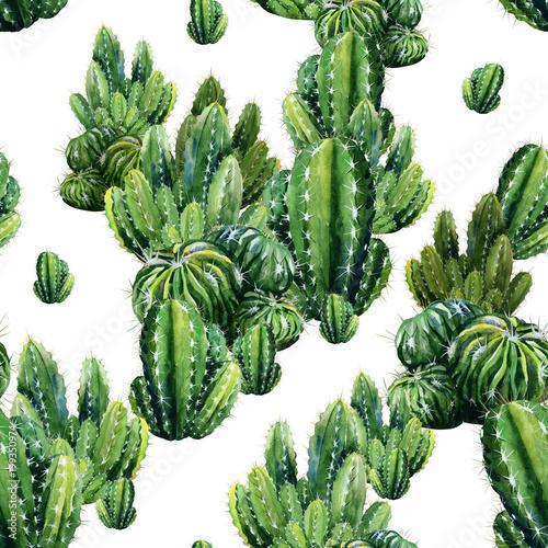 wzor-z-akwarela-kaktusy-ilustracja-kaktusa-moze-byc-uzywana-jako-ozdoba-dekoracja