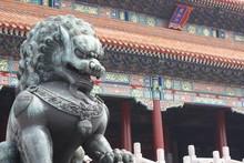 Lion Statue Outside The Gate O...