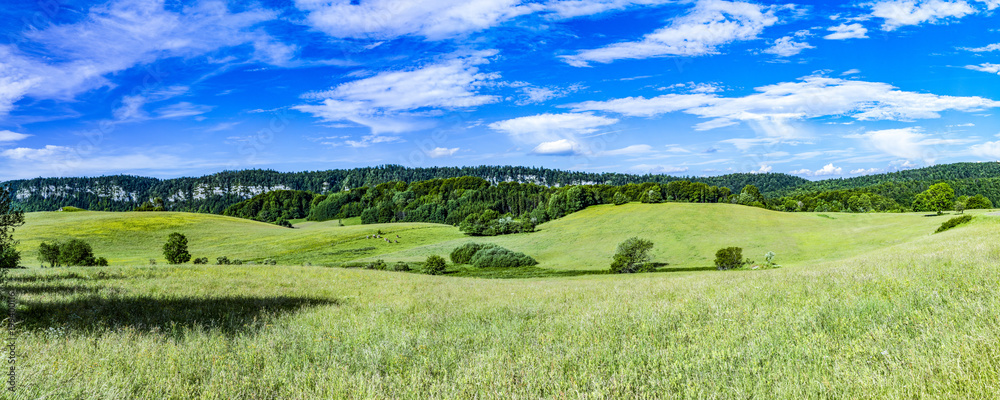 Fototapety, obrazy: scenic landscape will hills and meadows in Le Frasnois in the Jura region in France