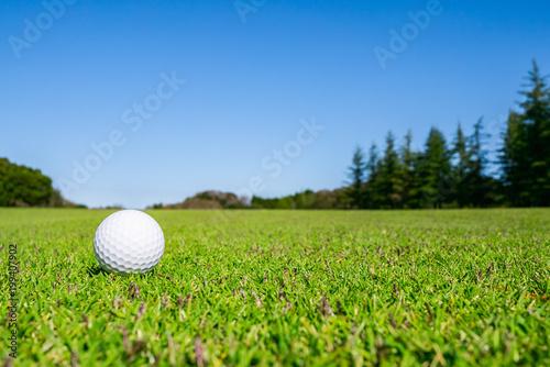 ゴルフボール フェアウェイ