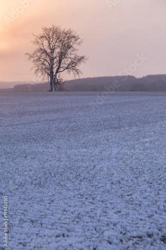 Snowy landscape in village of Ontanilla village of Soria Spain