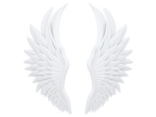 White Angel Wings Isolated On ...