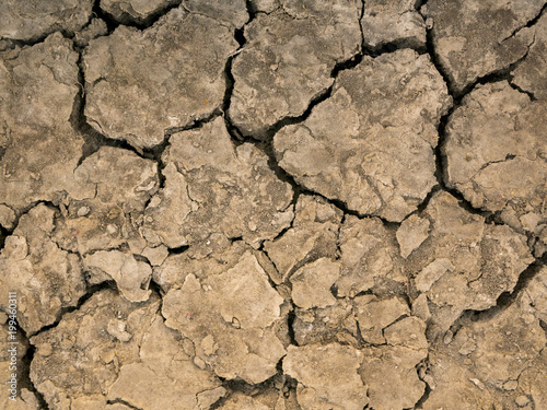 Fotografía  The parched soil and cracked