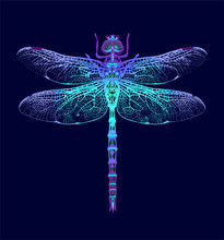 Dragonfly. Seamless Pattern. D...