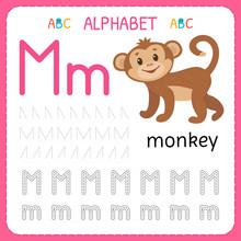 Alphabet Tracing Worksheet For...