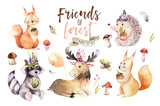 Cute watercolor bohemian baby cartoon hedgehog, squirrel and moose animal for nursary, woodland isolated forest illustration for children. Bunnies animals.