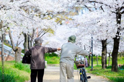 Obraz na plátně 散歩 老夫婦