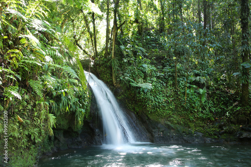 Crayfish Waterfall or La Cascade aux Ecrevisses, Guadeloupe National Park, Guadeloupe, French West Indies Wallpaper Mural