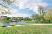 Typical Lakeside New-establish...