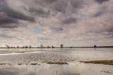 rozlewisko rzeki , wiosenne roztopy, zachmurzone niebo