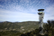 Watchtower In A Forest Near To...