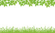 Nature background with leaves and grass.
