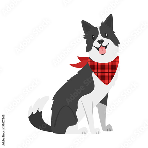 Valokuvatapetti farm animal - dog