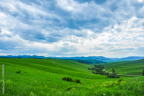 Staande foto Groene Green meadow and forest against the mountains. Altai, Russia.
