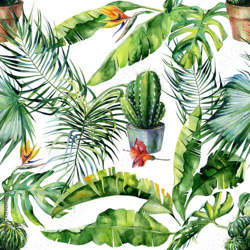 bezszwowa-akwareli-ilustracja-tropikalni-liscie-gesta-dzungla-i-kaktus-sztuka-wzor-z-motywem-tropiku-i-ilustracja-kaktusa-moze-sl