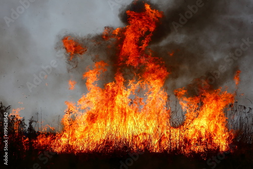 In de dag Vuur / Vlam The fire of large areas of dry grass in the meadow can turn into a terrible tragedy as if it got close to residential houses.