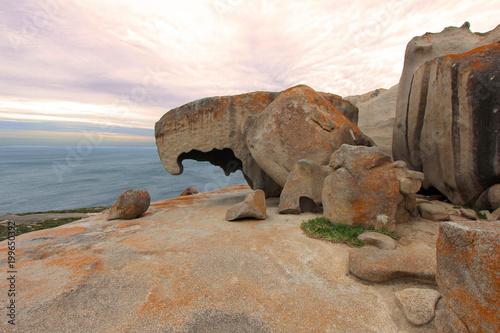 Spoed Foto op Canvas Neushoorn Remarkable Rocks Australia
