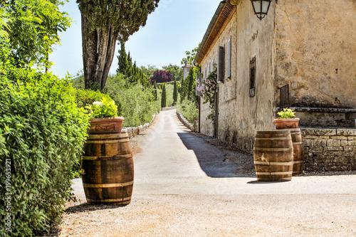 Spoed Foto op Canvas Mediterraans Europa Summer road in Tuscany