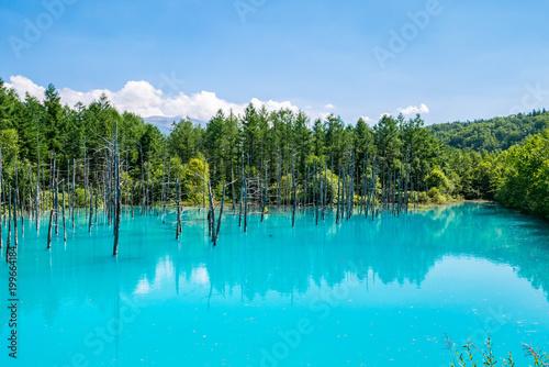 Tuinposter Turkoois 北海道 美瑛町 青い池