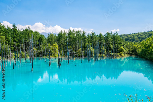 Fond de hotte en verre imprimé Turquoise 北海道 美瑛町 青い池
