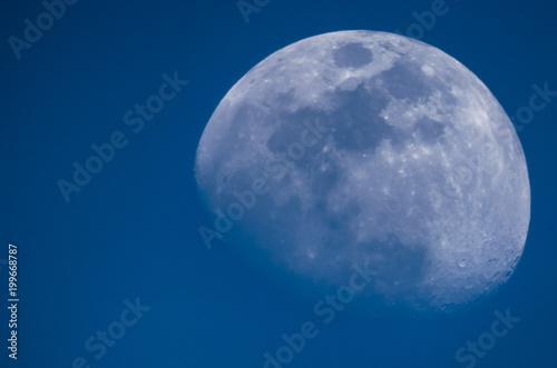 Obraz Luna de tarde - fototapety do salonu