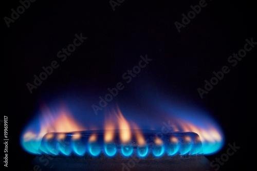 Fotografie, Obraz  orange tongues of blue flame of a gas burner1