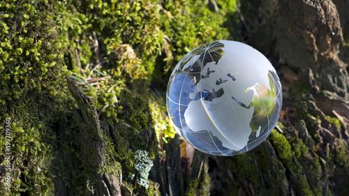 Fotografía  Globus