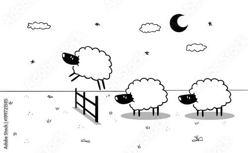Fototapeta premium Owca