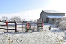 Farm Christmas Scene
