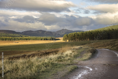 Fotografiet Scottish landscape in Cairngorms National Park