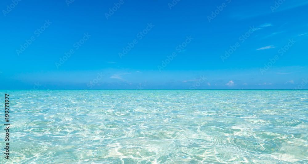 Fototapety, obrazy: ビーチ・海