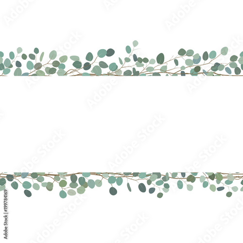 Elegant seamless borders of eucalyptus branches. Floral frame or greeting card. Vector