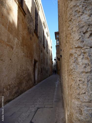 Foto op Canvas Smal steegje wąska uliczka pomiędzy starymi domami z kamienia w europie południowej