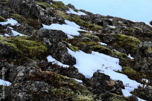 Foto op Aluminium Heuvel Side of a hill in Iceland littered with rocks