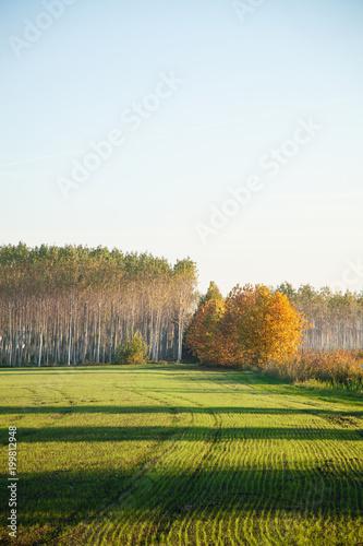 Foto op Aluminium Blauw early autumn countryside