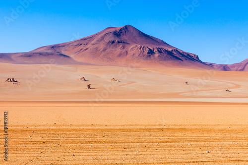 Photo Salvador Dali Desert