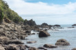 Felsküste Neuseeland