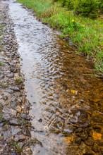 Water Burble Through An Unpave...
