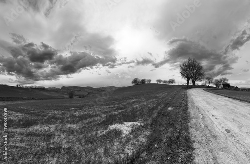 Deurstickers Bleke violet Black and white countryside landscape, road between fields and cloudy sky