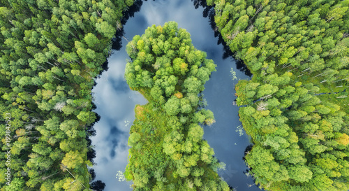 Papiers peints Rivière de la forêt Aerial view on the forest and river. Beautiful natural landscape at the summer time