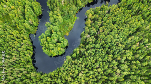Poster Rivière de la forêt Aerial view on the forest and river. Beautiful natural landscape at the summer time