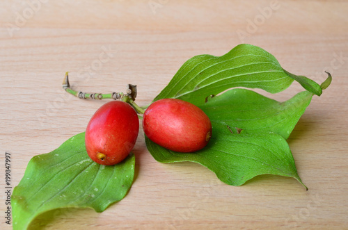 Fotografie, Tablou Pair of Cornelian cherries