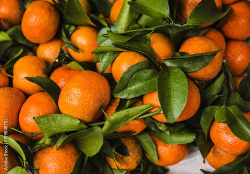 Close-up of oranges for sale at an open market