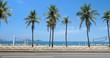 Beach with palms behind the asphalt road. Rio de Janeiro, Brazil