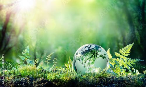Tuinposter Natuur Globe On Moss In Forest - Environmental Concept