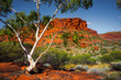 canvas print picture - Aussie Outback