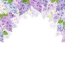 Vector Background With Purple,...