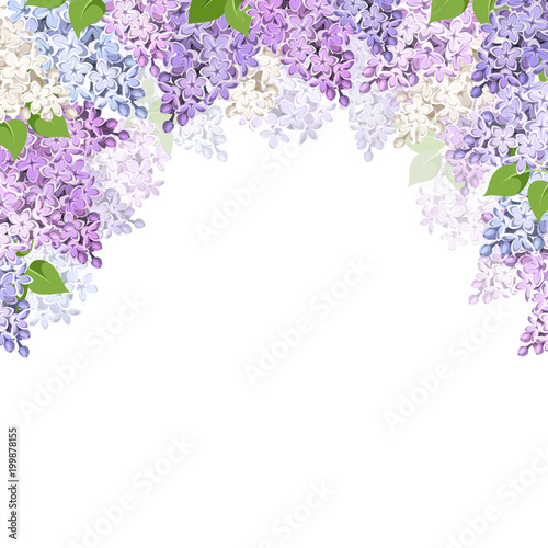 Stampa su Tela Vector background with purple, pink, blue and white lilac flowers